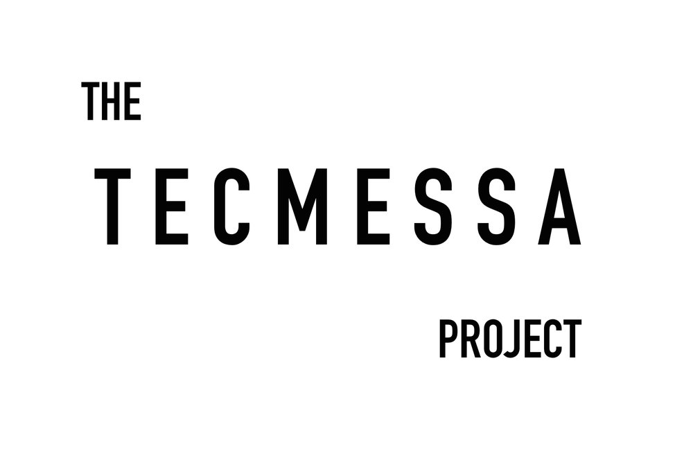 The Tecmessa Project Logo.jpg