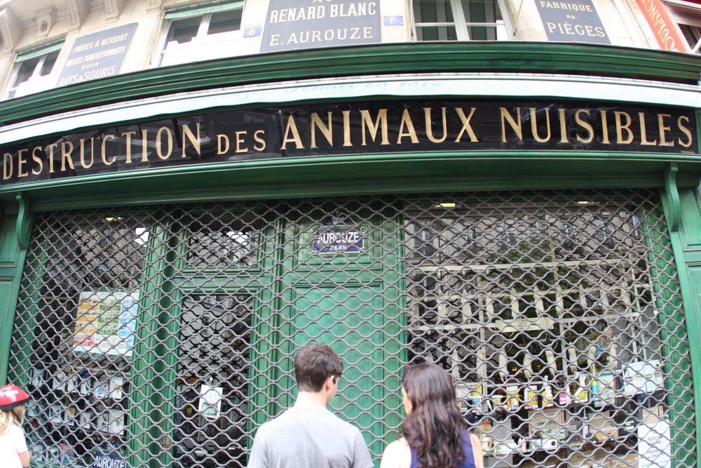"The rat shop from the movie ""Ratatouille""!"