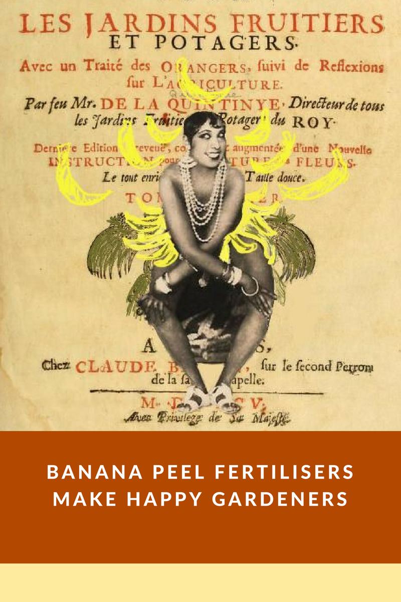 bananas2.png