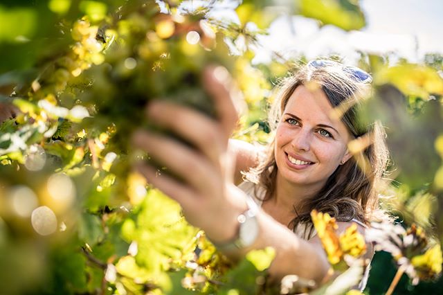 Harvest 2018 was simply AMAZING 😍 the earliest harvest ever but great quality! No matter if it's Chardonnay, Grüner Veltliner or Pinot Noir - all the grapes were simply perfect! 🍇💪🏻 all Pet-Nats are bottled aswell so now I've got all the time I need to take care of my babies! 😃🙌😍🍾🍇 #harvest2018 #austrianwine #lifeisbetterwithbubbles #austrianchampagne #femalewinemaker #petnat #petillantnaturel #naturalwine #organicwine #amazing #perfect #christinahugl #sektausösterreich #sektistsexy #austriansekt #wachau #weinviertel #kamptal #methodetraditionelle #traditionalmethode #sabrage #bubbles #hugl #kollmütz #grub