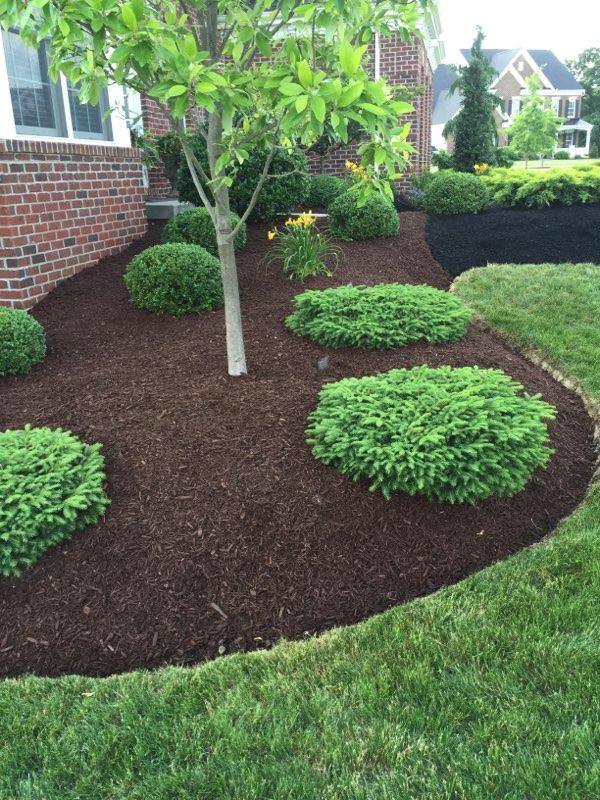 landscape maintenence mulch installation.jpg