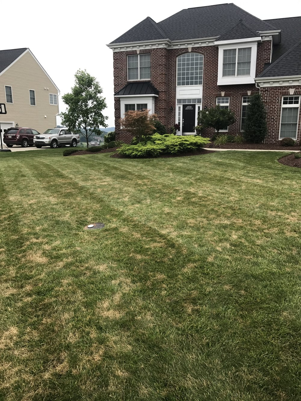 Lawn Maintenance in South Fayette.JPG