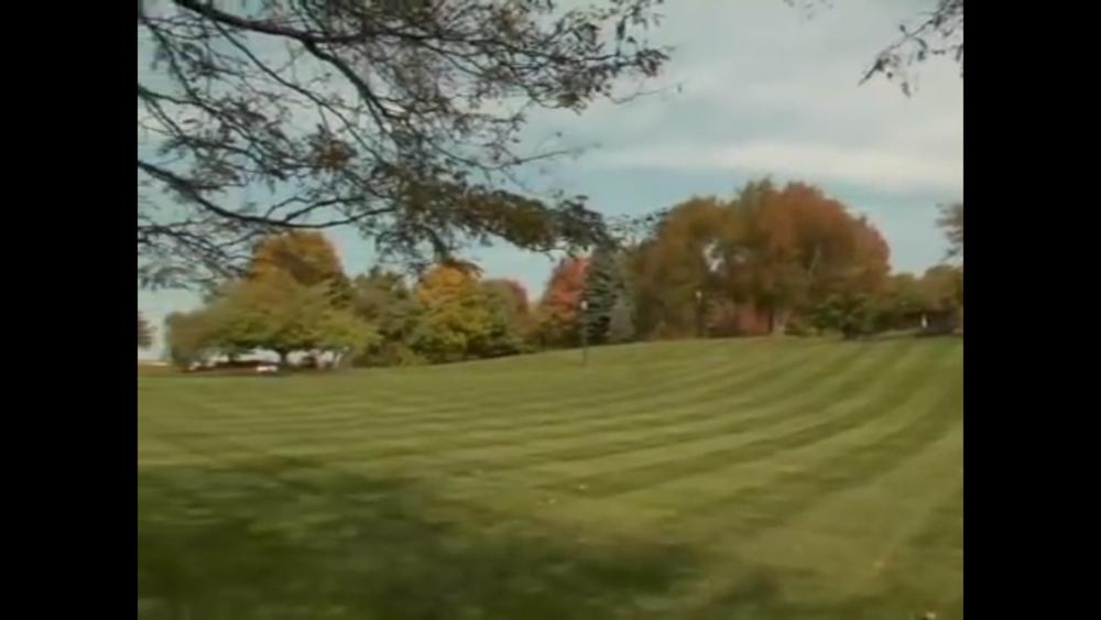 lawn mowing service.jpg