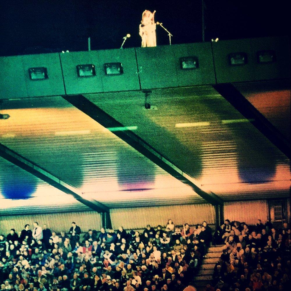 Euan Anderson  Murrayfield Stadium, Edinburgh  Scotland v All Blacks