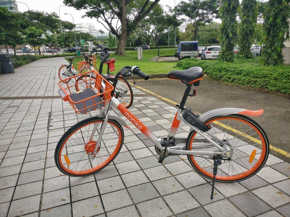 A shared bike