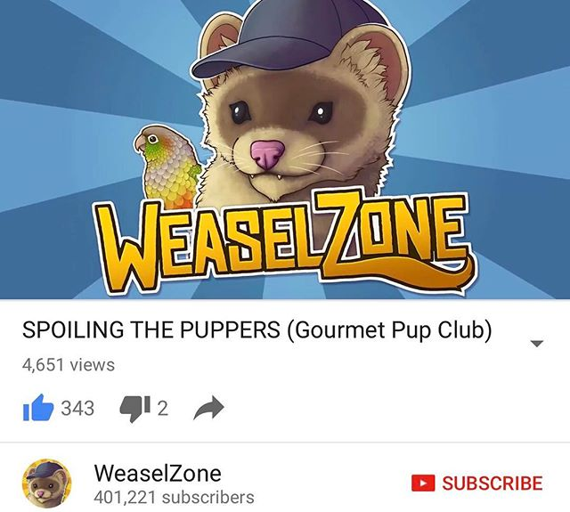 Ever wondered what was in a gourmet Pup Club box? WeaselZone uploaded an Unboxing of one of our boxes. Here is the link https://youtu.be/oSBKO9Rhheg  get your own at gourmetpupclub.com - @anseldiama