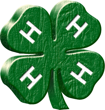 4-H - We are located in S.E. Washington State. The purpose of this page is to keep 4-H families in our county informed about current 4-H news and other important information.