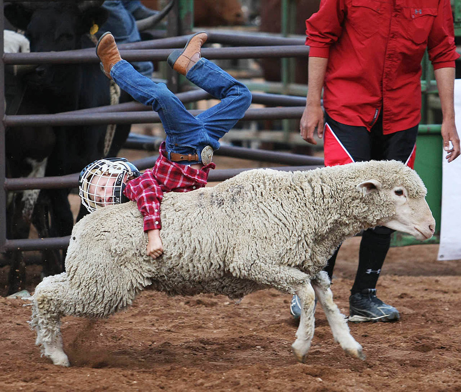 Columbia County Fair and Rodeo September 8, 9, 10 Click on the Muttin Buster for more info!  -