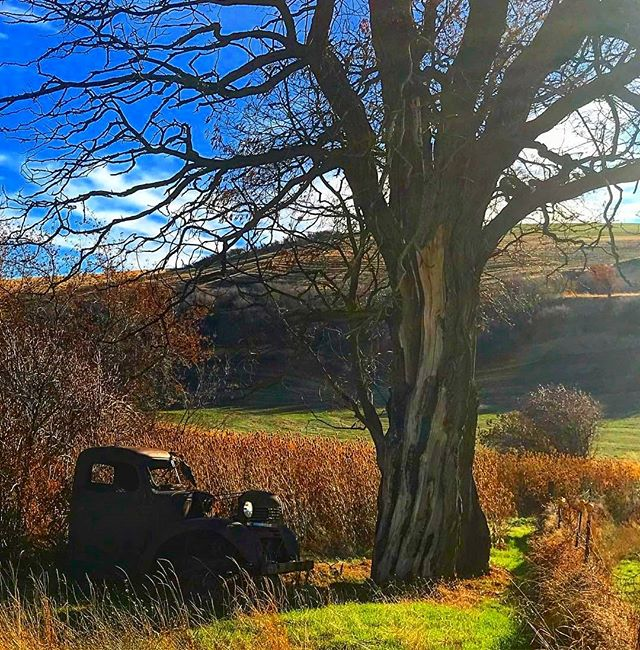 from @karynmossmoore #america #rural #cars #washington #autumn