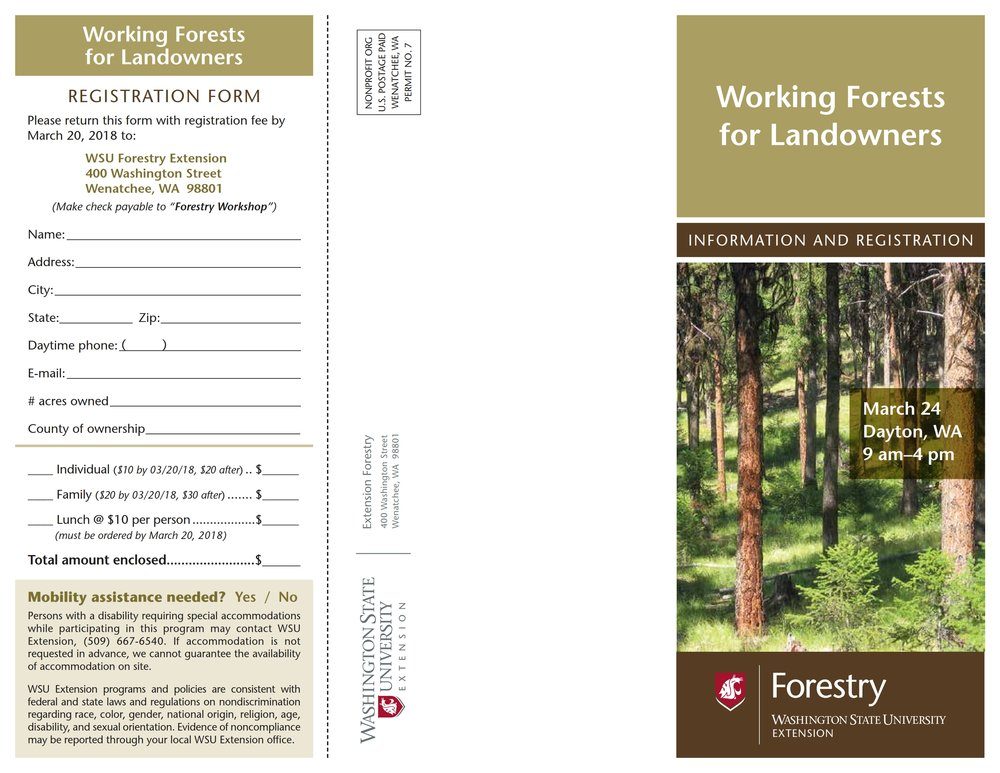 Working-Forests-Dayton_001.jpg