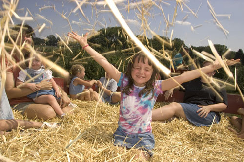playing-in-hay.jpg