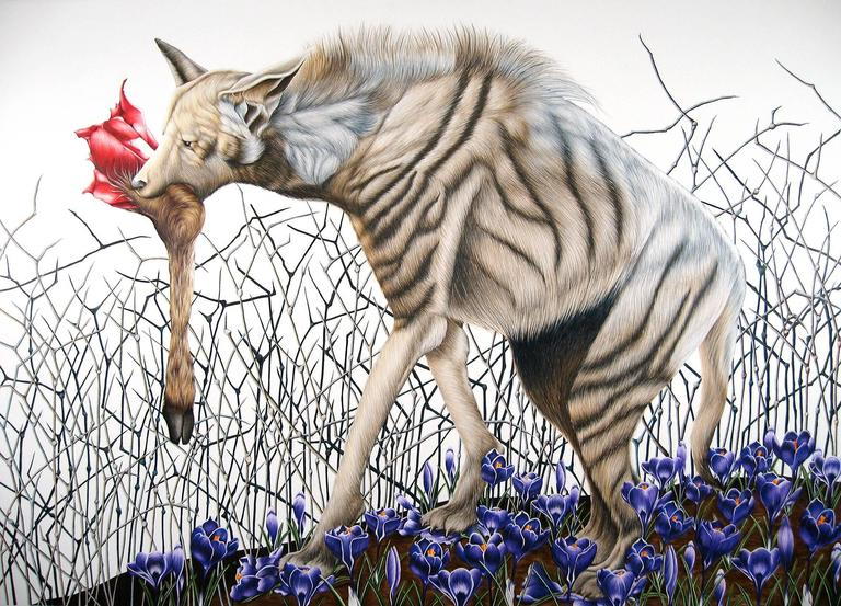 "Emily roz, ""Hyena with Crocus"" color pencil on paper, 30""x41"""