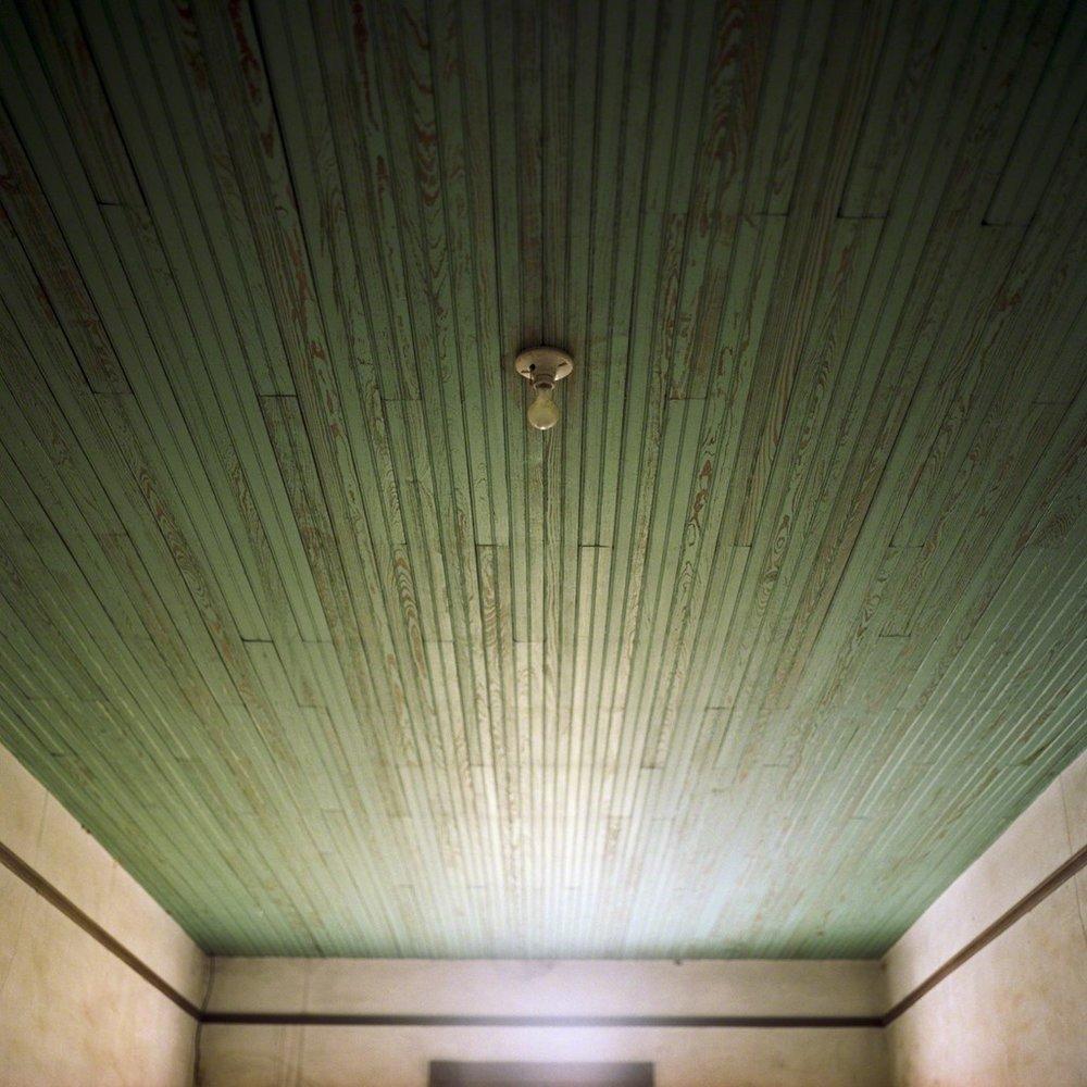 """Bulb"" Pigment Print Photography, 15""x 15"""