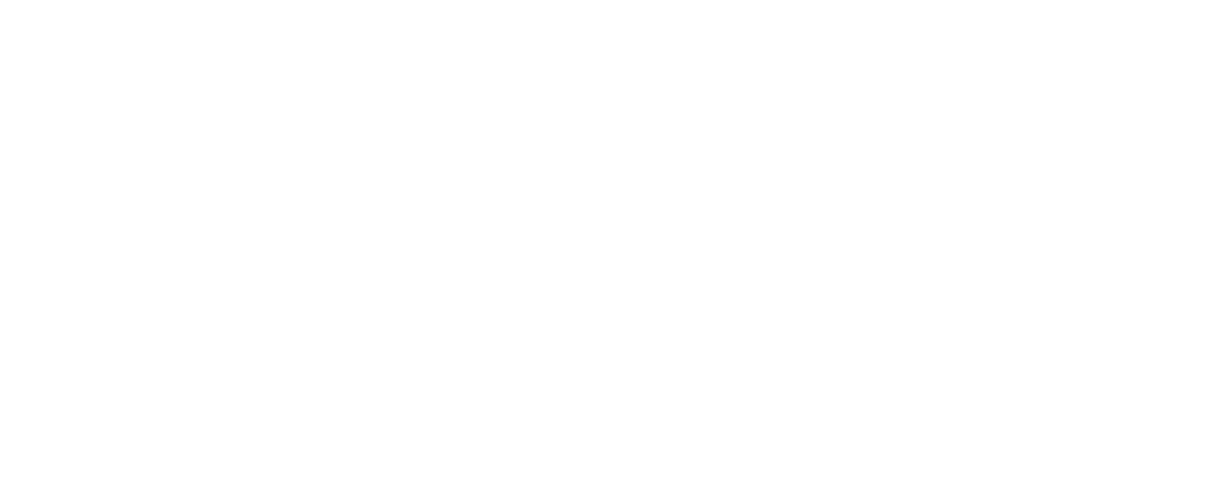 The Scoundrel & Scamp Theatre