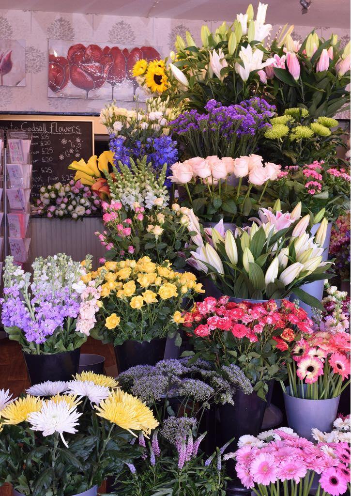 Wide Range of Flowers Inside the Shop