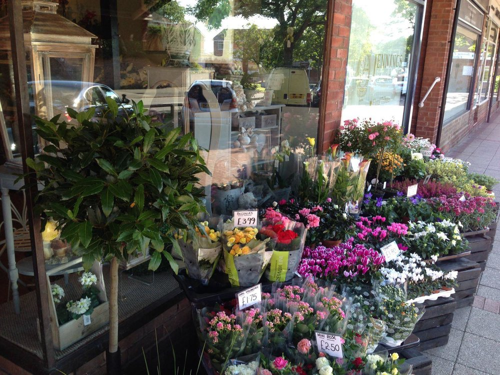 Bay Tree and Rows of Flowers Outside the Shop