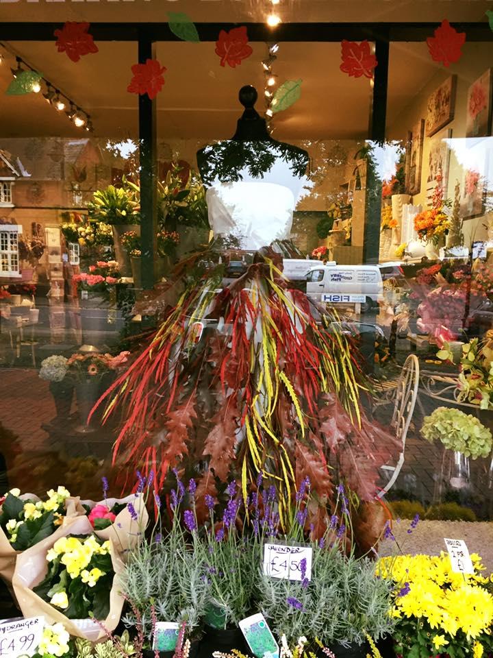 Autumn Leaves Dress in Shop Window