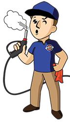Detail Buddy | Mobile Steam Auto Wash | Nanaimo | Ladysmith | Chemainus | Saltair | Cedar | Carwash | Services