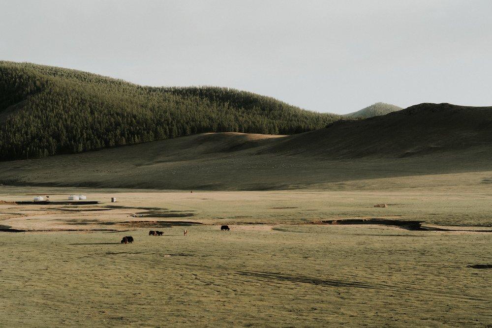 Mongolia_2018 (181 of 403) copy.jpg