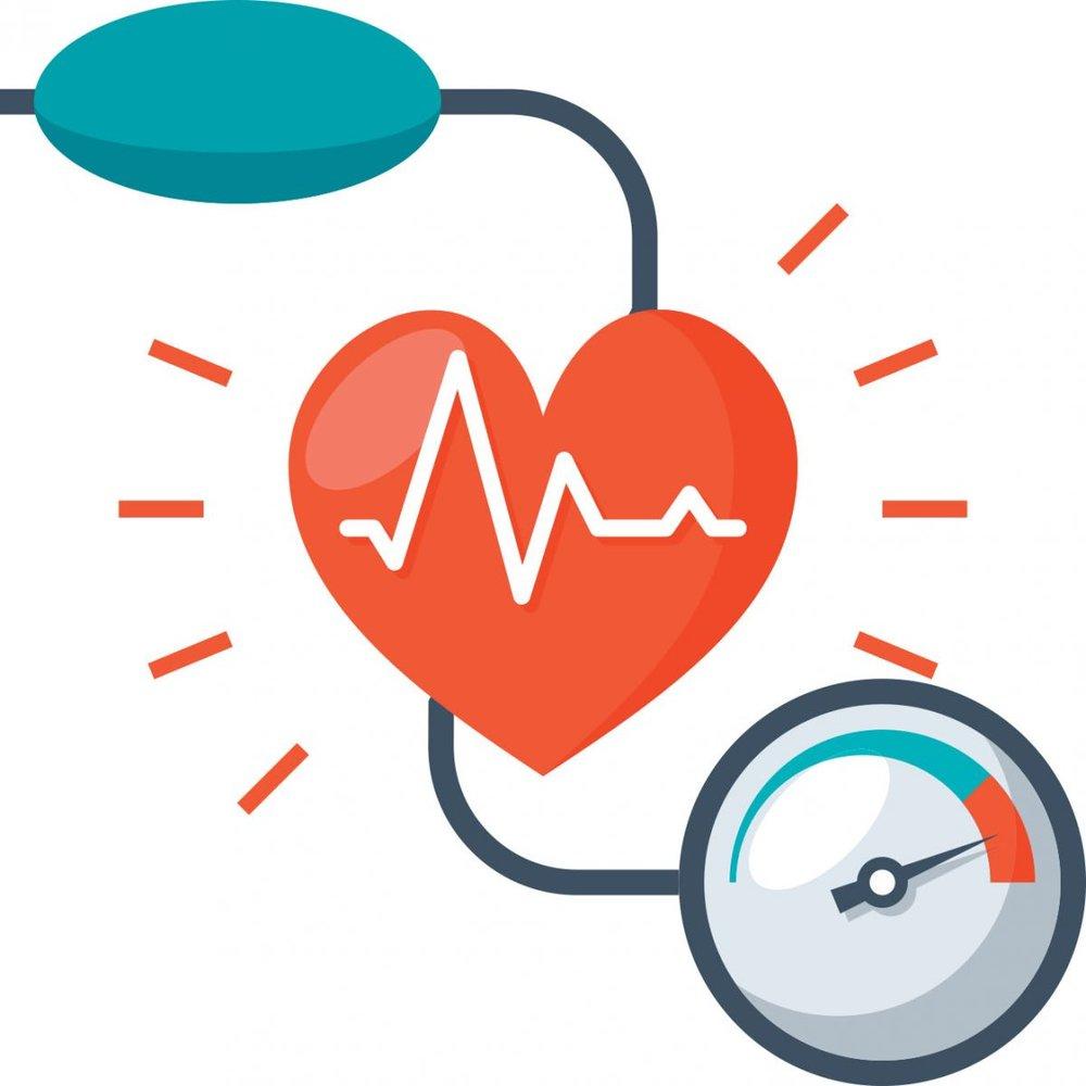 cardiovascular 1.jpg