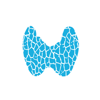 thyroid-icon-342.png