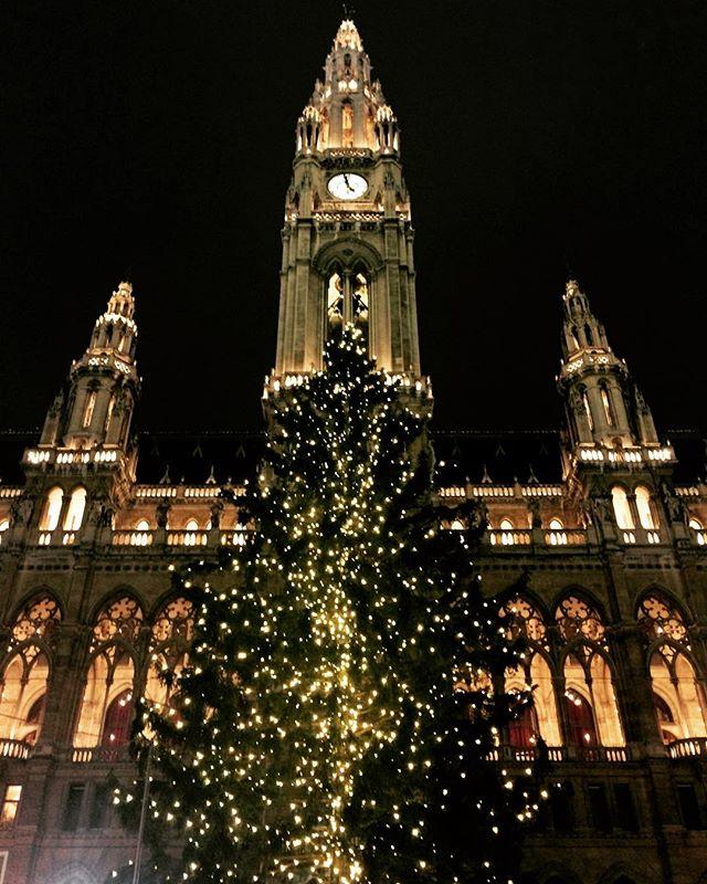 #tbt to Vienna at Christmas 🎄 #mostwonderfultimeoftheyear #sparkleandshine