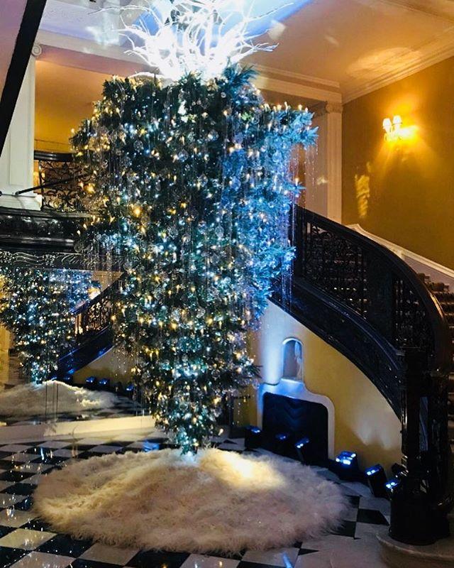 O Christmas Tree, O Christmas Tree... #christmasinlondon #claridgestree