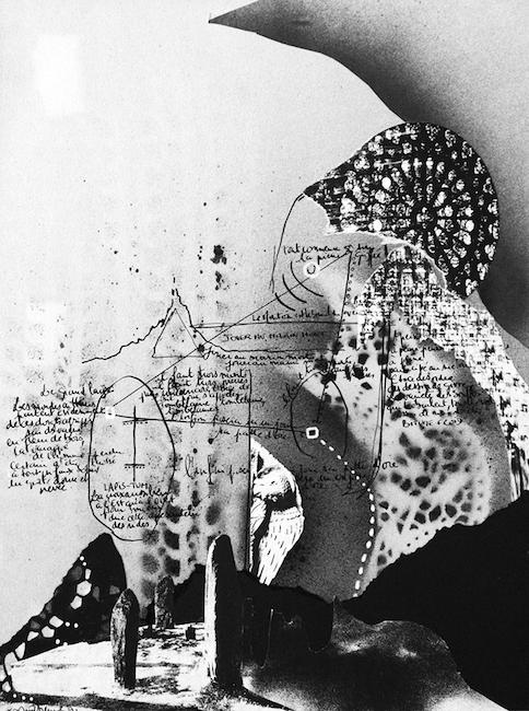 Grande capucine voyageuse Collage, acrylique, encre de chine – 32 x 24 cm