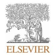 56-Elsevier.jpg