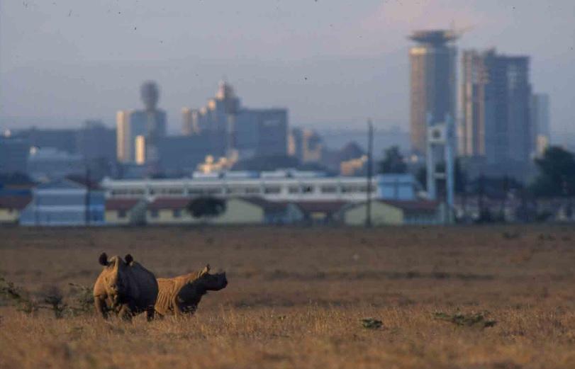 Nairobi_NP1.jpg
