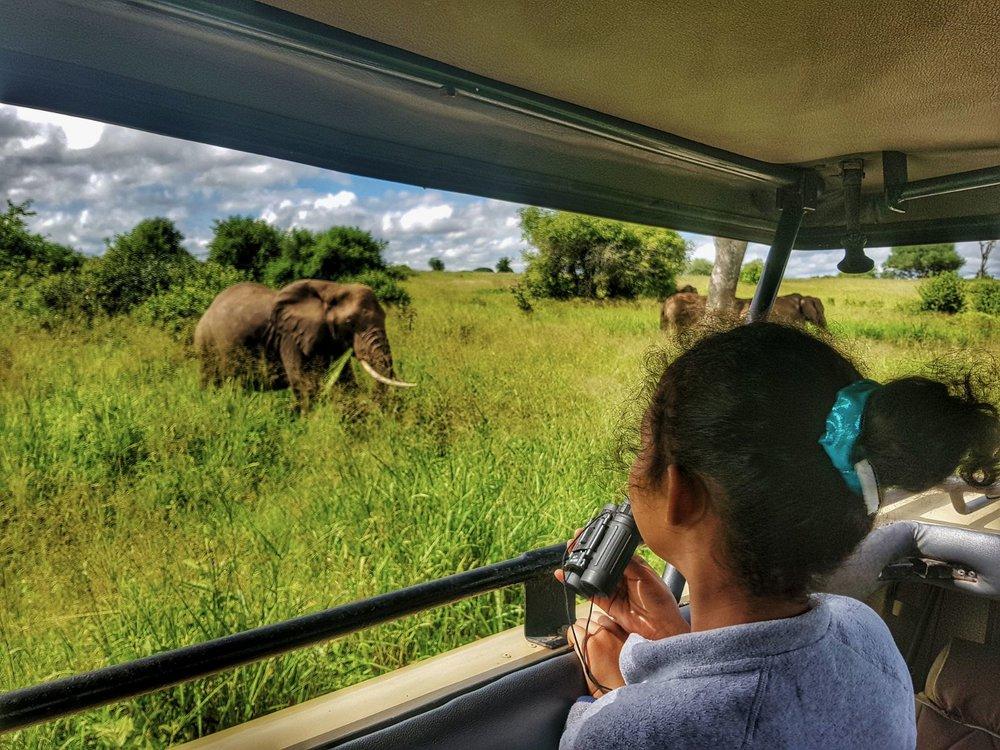 Uganda_Safari3.jpeg
