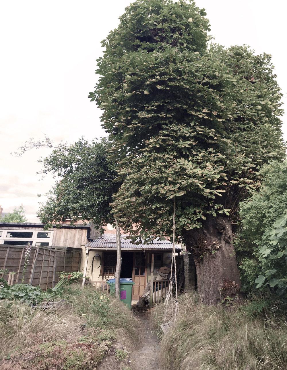 studioort_170831_gardenstudio_twickenham.jpg