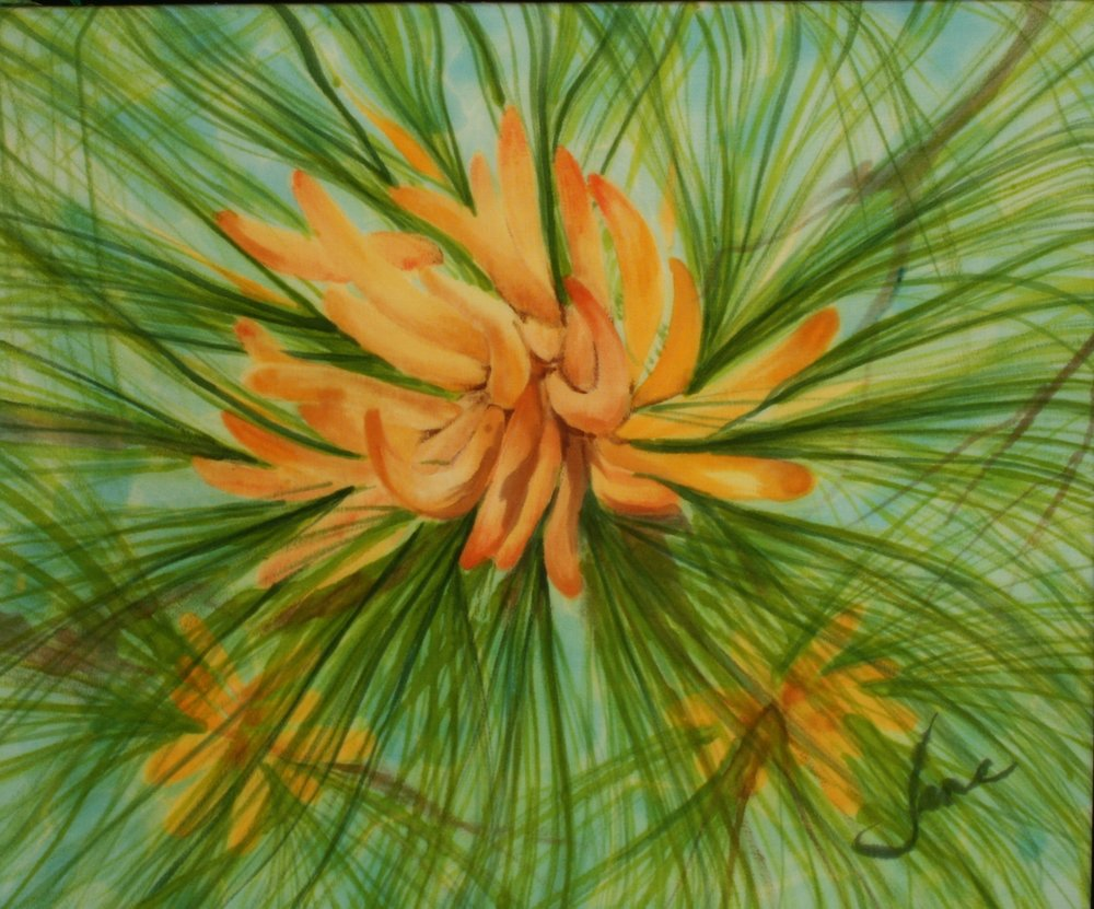LONG LEAF PINE FLOWER     9x12      $150.00   French Dyes on Silk                                                BUY NOW