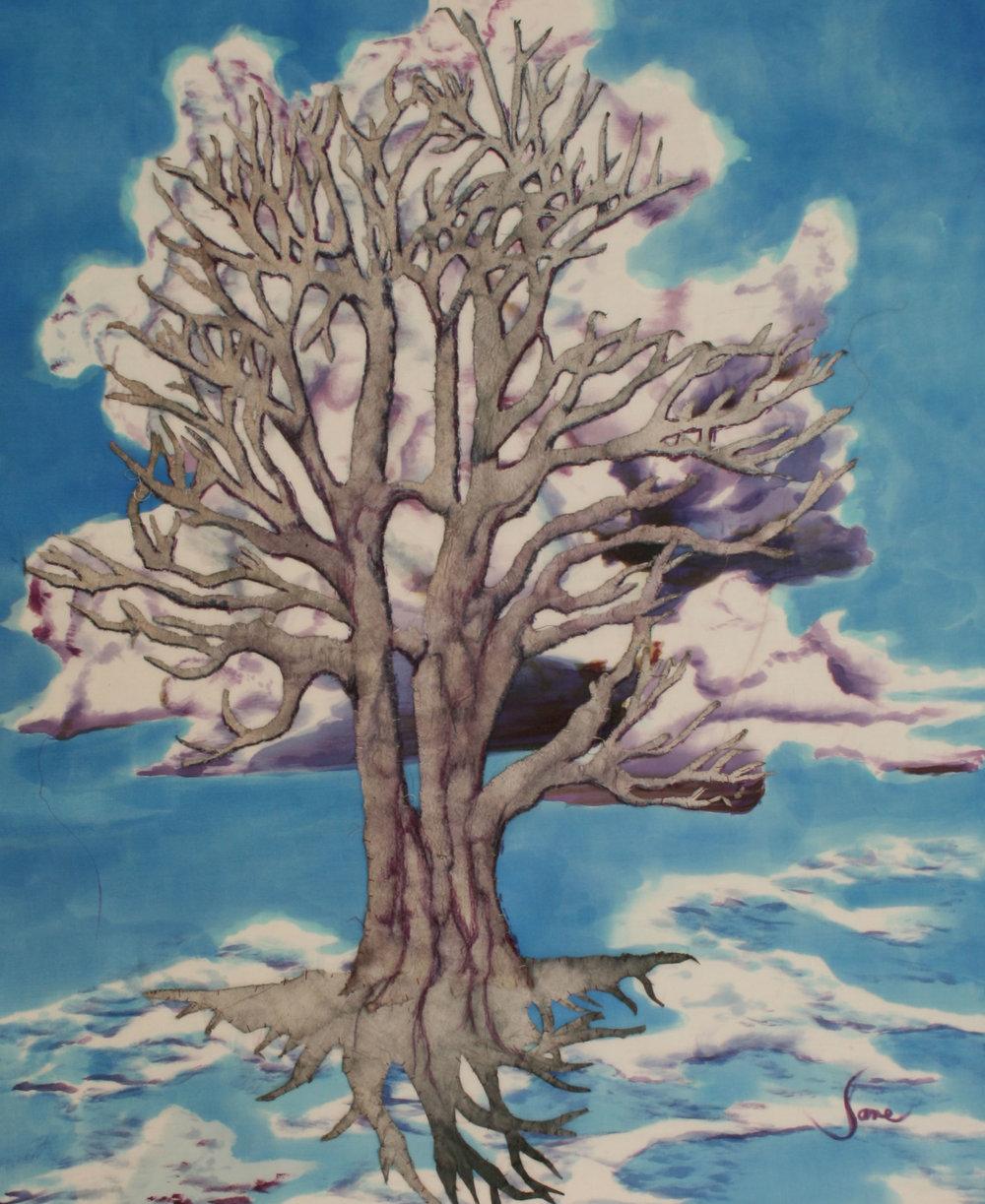 white oak wcloud.jpg