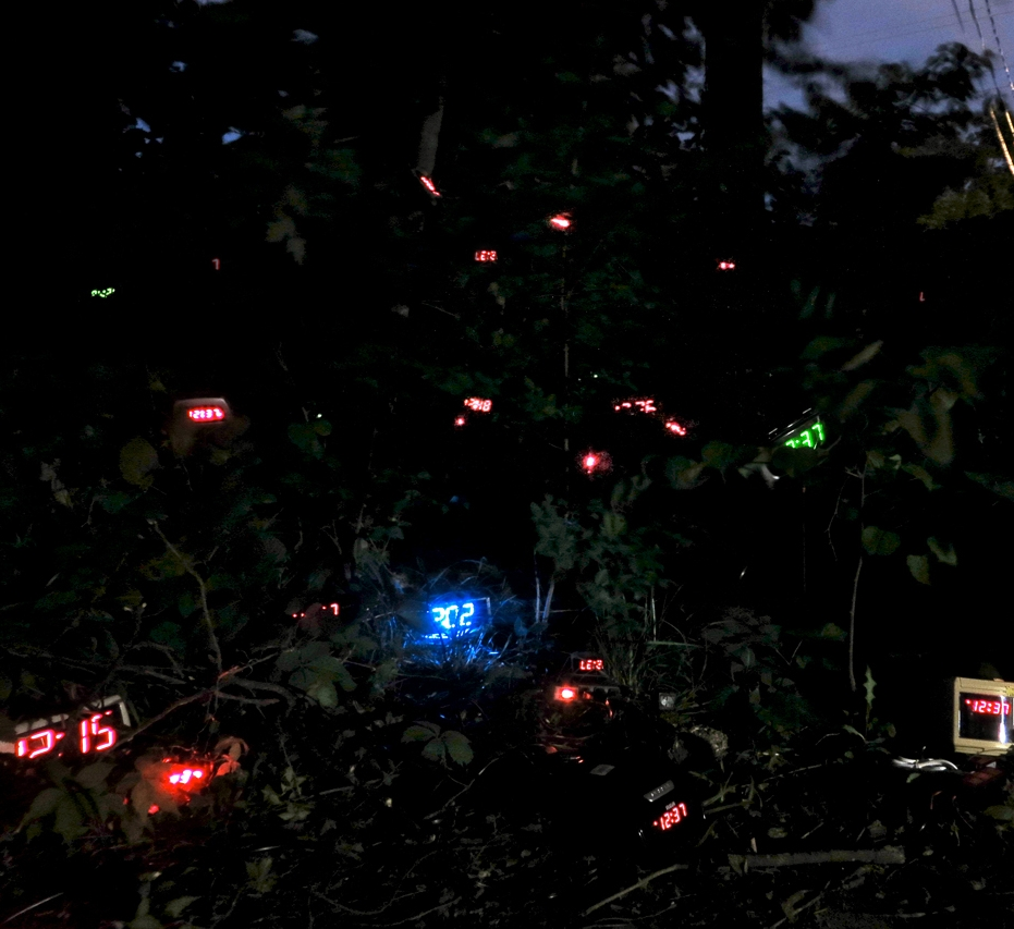 Feral Clocks, installation of 100 LED clock radios in natural setting, 2014