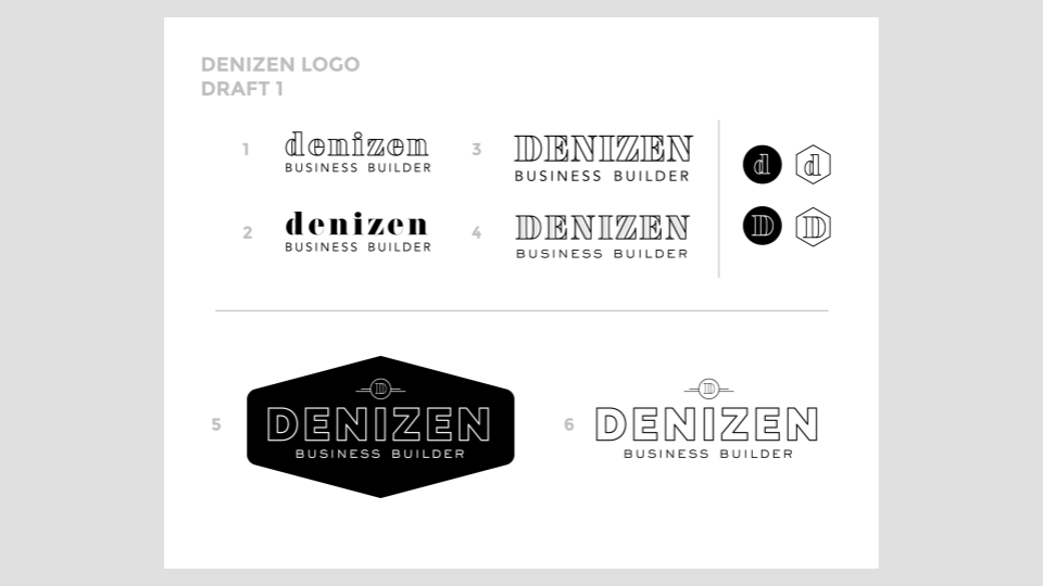 Copy of MKW Graphics X Denizen for web (6).png