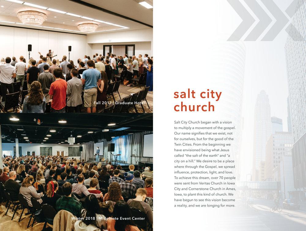 SaltCityMultiplyPrint2.jpg
