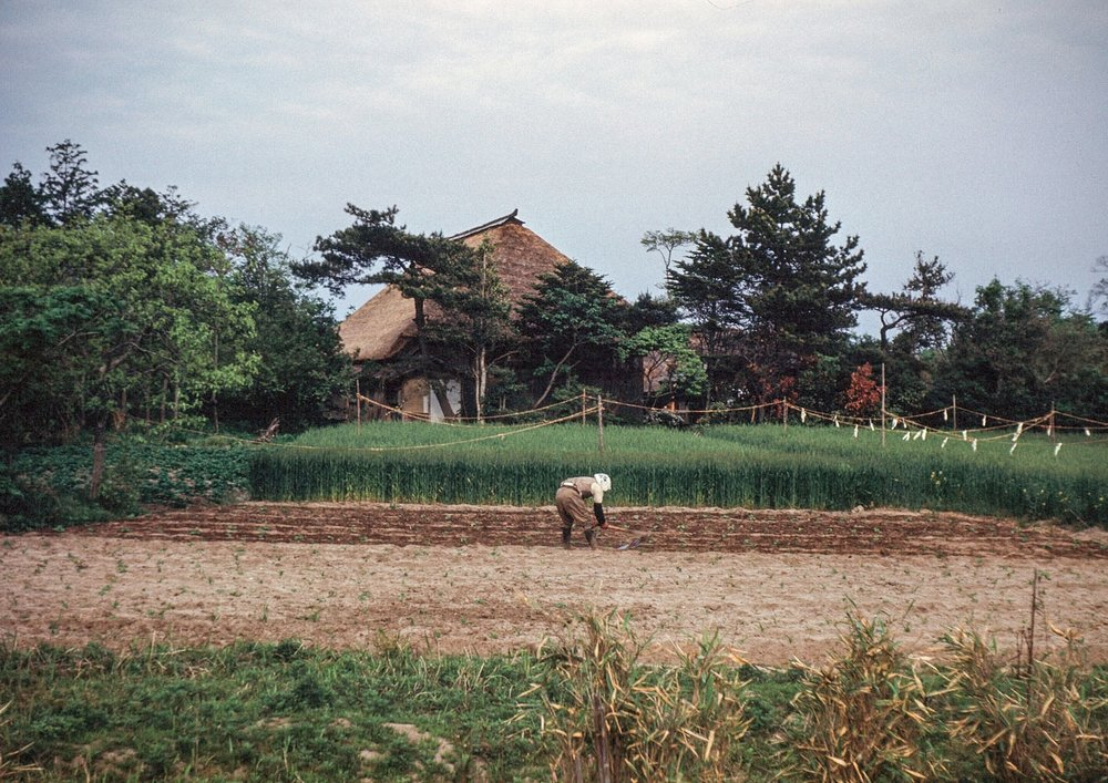 49- Farmhouse and Fields