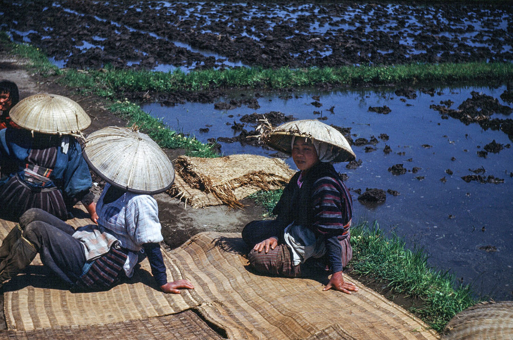 63-Women in Straw Hats Resting Beside Rice Paddies