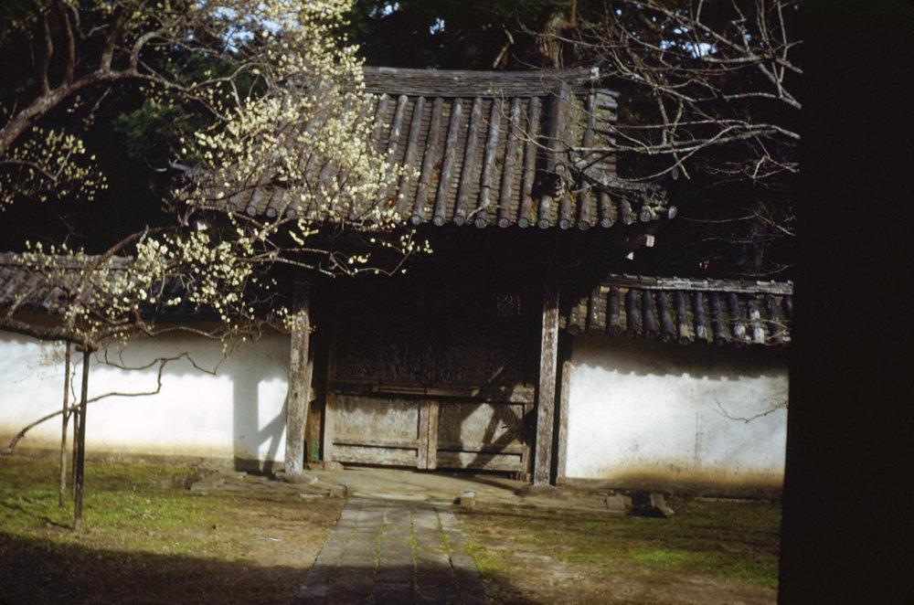 272-Garden Gate