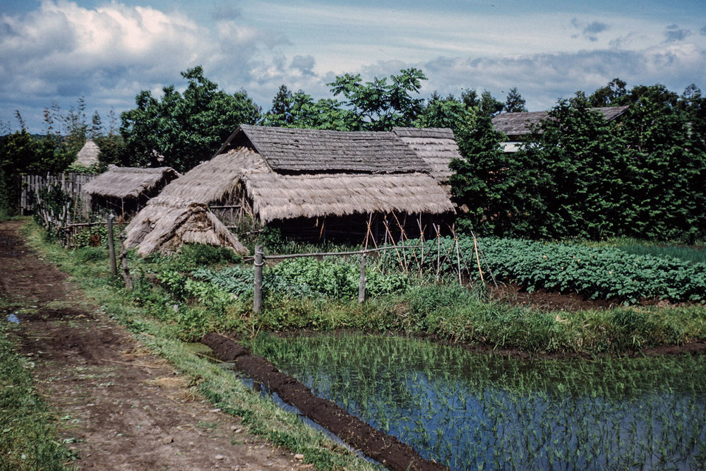 325-Thatch Roofed Farm Building