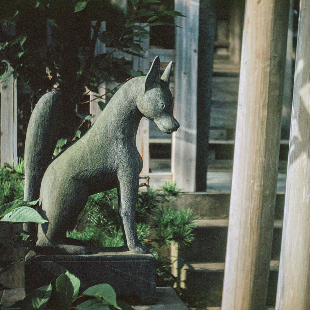 406-Dog Statue. Located?