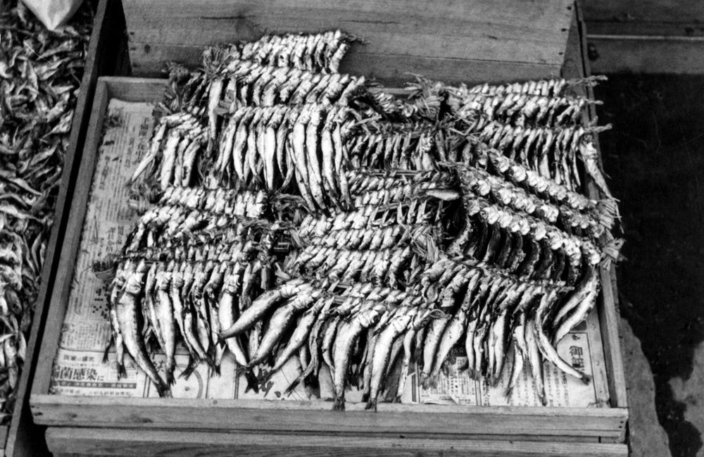 442- Dried Fish Display