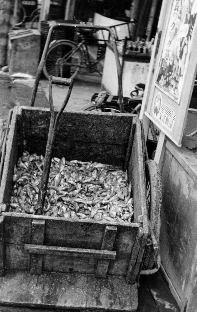 445- Cart with Dried Fish