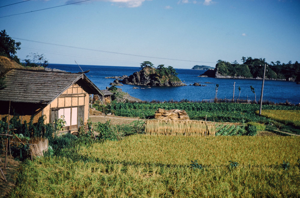 507- Farm with Island in Distance- Isatomae