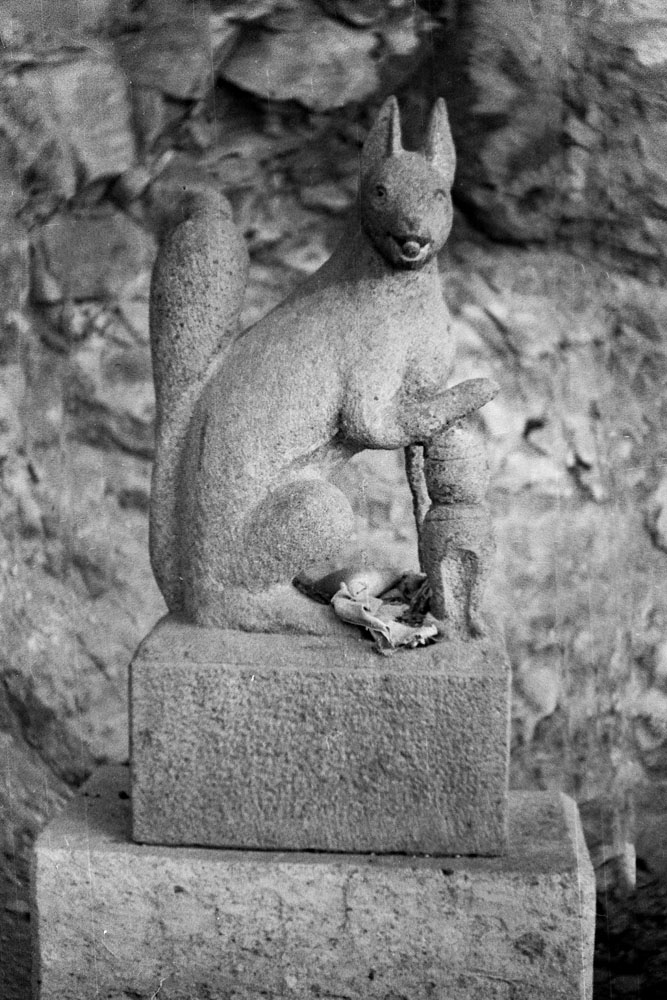 535-Stone Squirrel