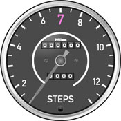 StepsSpeedometer.175h.jpg