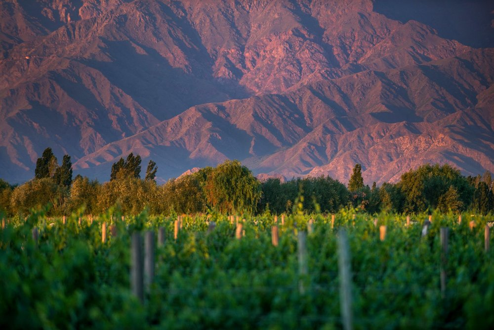 02-argentina-wine-regions-salta-and-uco-valley.jpg