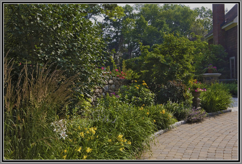 Courtyard perennial Garden