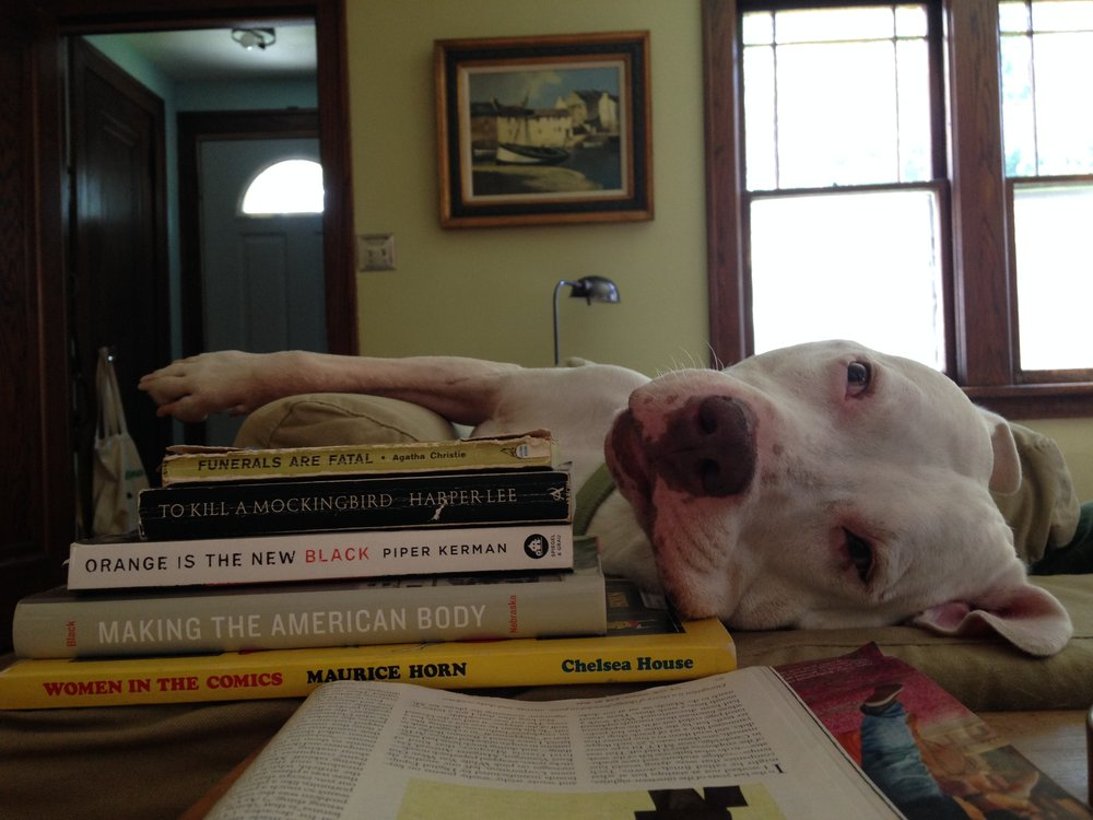 For dogs, the barriers to literacy are great, but that doesn't stop Captain Jack from leisure reading.